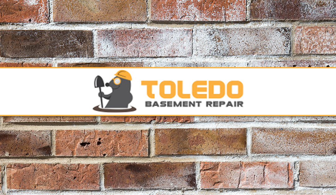 Signs of Basement Water Damage for House Hunters